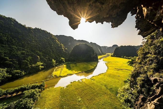 """Mùa vàng Tam Cốc bắt đầu từ tháng 5 đến trung tuần tháng 6 hàng năm. Với cảnh núi non hùng vĩ, Tam Cốc - Tràng An còn được mệnh danh là """"Hạ Long cạn""""."""